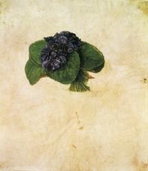 Bouquet de violettes (Albrecht Dürer)