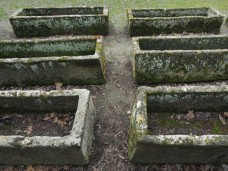 arles-sarcophages-des-alyscamps