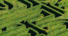 labyrinthe-vegetal-tpopova-750x400